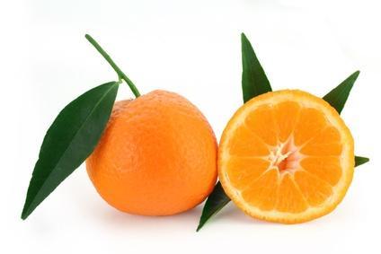 mandarine-2.jpg