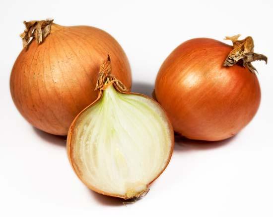 Image gallery oignon for Planter oignon