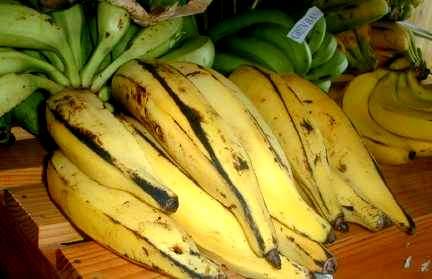 plantain-1.jpg